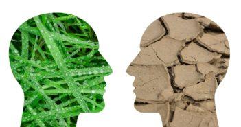 discussie klimaat